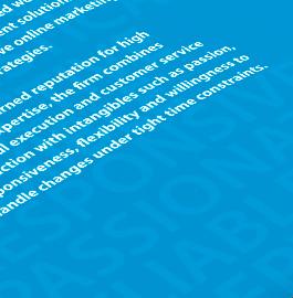 MGSoft-Net – Capabilities Brochure